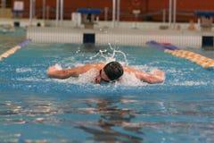 κολύμβηση πεταλούδων Στοκ Εικόνες