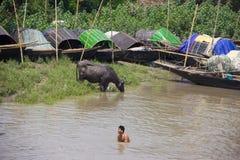 Κολύμβηση στον ποταμό του Γάγκη στοκ φωτογραφίες