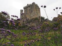 Κομητεία Κορκ, Ιρλανδία με την κολακεία Castle Στοκ φωτογραφία με δικαίωμα ελεύθερης χρήσης