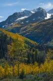 Κομητεία Gunnison σειράς βουνών αλκών βουνών εδρών Στοκ εικόνα με δικαίωμα ελεύθερης χρήσης