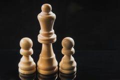 Κομμάτια σκακιού του ξύλου - μια βασίλισσα και ενέχυρα Στοκ Εικόνες