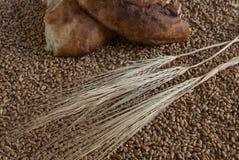 Κομμάτια σπασμένος lavash και spikelets στα σιτάρια σίτου στοκ εικόνα με δικαίωμα ελεύθερης χρήσης