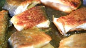 Κομμάτια τηγανίσματος των ψαριών απόθεμα βίντεο