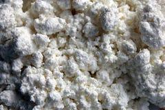 κομμάτια της άσπρης φρέσκιας αγροτικής κινηματογράφησης σε πρώτο πλάνο τυριών εξοχικών σπιτιών Στοκ εικόνες με δικαίωμα ελεύθερης χρήσης