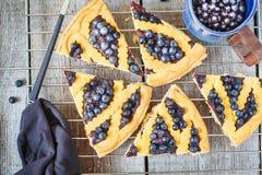 Κομμάτια της σπιτικής ανοικτής πίτας βακκινίων με το παγωτό βανίλιας Στοκ Εικόνες