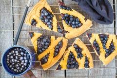 Κομμάτια της σπιτικής ανοικτής πίτας βακκινίων Στοκ εικόνες με δικαίωμα ελεύθερης χρήσης