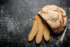 Κομμάτια του ψωμιού με spikelet στοκ εικόνες με δικαίωμα ελεύθερης χρήσης
