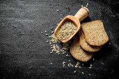 Κομμάτια του ψωμιού σίκαλης με το σιτάρι στοκ εικόνες