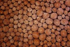 Κομμάτια των στρογγυλών ξύλινων κύκλων σε ένα σχέδιο Φυσικό οργανικό neutr Στοκ Φωτογραφία