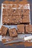 Κομμάτια cheesecake σοκολάτας brownies Στοκ φωτογραφία με δικαίωμα ελεύθερης χρήσης