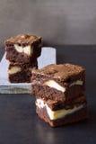 Κομμάτια cheesecake σοκολάτας brownies Στοκ εικόνες με δικαίωμα ελεύθερης χρήσης