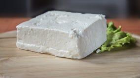 Κομμάτι και μαρούλι τυριών Στοκ φωτογραφία με δικαίωμα ελεύθερης χρήσης