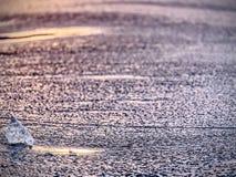 Κομμάτι πάγου στην εκλεκτική φωτογραφία εστίασης Άποψη λεπτομέρειας στα βαθιά clefts και τις παγωμένες φυσαλίδες Στοκ Φωτογραφίες