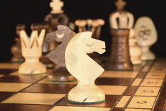 Κομμάτι σκακιού - ο ιππότης Στοκ εικόνες με δικαίωμα ελεύθερης χρήσης