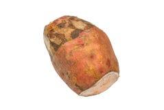 Κομμάτι της υψηλής οργανικής πορτοκαλιάς διοσκορέας βιταμινών, που απομονώνεται Στοκ Εικόνες