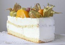 Κομμάτι του κέικ γιαουρτιού Στοκ Φωτογραφία
