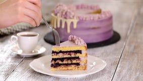 Κομμάτι του κέικ θερινών βακκινίων φιλμ μικρού μήκους
