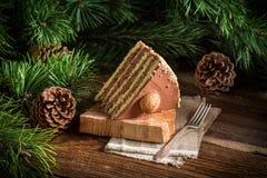Κομμάτι του κέικ ξύλων καρυδιάς στοκ φωτογραφία με δικαίωμα ελεύθερης χρήσης