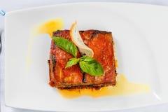 Κομμάτι του νόστιμου καυτού lasagna στοκ φωτογραφία