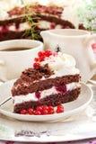 Κομμάτι του φρέσκου σπιτικού μαύρου δασικού κέικ στοκ φωτογραφίες