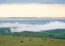 Κομμένος τομέας και πράσινο λιβάδι στοκ φωτογραφία με δικαίωμα ελεύθερης χρήσης