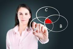 Κομμένο διάγραμμα κύκλων επιχειρηματιών σχέδιο. Στοκ Εικόνες