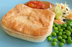 Κομματιάστε την πίτα κρέατος που εξυπηρετείται σε ένα πιάτο Στοκ Εικόνες