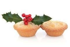 Κομματιάστε τις πίτες και τη Holly στοκ εικόνες με δικαίωμα ελεύθερης χρήσης