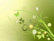 κομψά λουλούδια ανασκόπ& Στοκ εικόνα με δικαίωμα ελεύθερης χρήσης