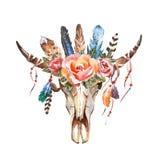 Κομψά λουλούδια εικόνας boho Watercolor, φτερά, ζωικά στοιχεία Στοκ Εικόνες