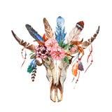 Κομψά λουλούδια εικόνας boho Watercolor, φτερά, ζωικά στοιχεία απεικόνιση αποθεμάτων