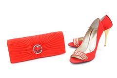 κομψά παπούτσια πορτοφο&lambd Στοκ Εικόνες