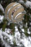 Κομψή ανασκόπηση χριστουγεννιάτικων δέντρων Στοκ εικόνες με δικαίωμα ελεύθερης χρήσης
