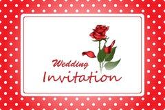Κομψή γαμήλια πρόσκληση πλαισίων με το κόκκινο ροδαλό λουλούδι στο υπόβαθρο σημείων Πόλκα ελεύθερη απεικόνιση δικαιώματος