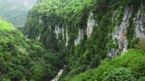Κομψή, ζωηρή πράσινη φύση της Γεωργίας, καταπληκτικές δέντρα και εγκαταστάσεις στα υψηλά βουνά πετρών στο φαράγγι Okatz, μυστήριο φιλμ μικρού μήκους