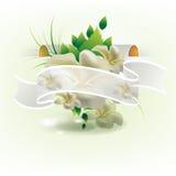 κομψή κορδέλλα φύλλων λ&omicron απεικόνιση αποθεμάτων