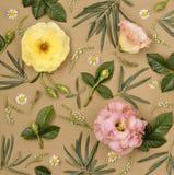 κομψή floral διακόσμηση Στοκ Εικόνες