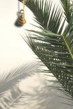 Κομψός αφηρημένος πράσινος φοινικών κουδουνιών ορείχαλκου Στοκ φωτογραφίες με δικαίωμα ελεύθερης χρήσης