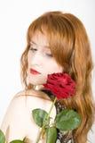 κομψός κόκκινος αυξήθηκ&epsi Στοκ φωτογραφίες με δικαίωμα ελεύθερης χρήσης
