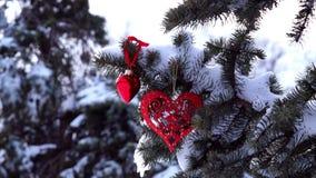 Κομψός κλάδος με το χιόνι και την καρδιά απόθεμα βίντεο