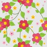 κομψός floral ανασκόπησης Στοκ Εικόνες