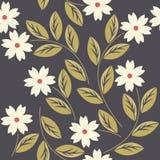 Κομψό άνευ ραφής σχέδιο με τα άσπρα λουλούδια Στοκ Εικόνες