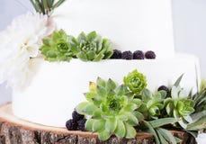 Κομψό γαμήλιο κέικ με τα λουλούδια και succulents Στοκ Φωτογραφίες