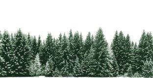 Κομψό δάσος δέντρων που καλύπτεται από το φρέσκο χιόνι κατά τη διάρκεια του χρόνου χειμερινών Χριστουγέννων Διανυσματική απεικόνιση