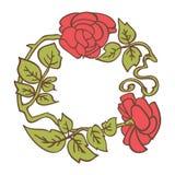 Κομψό εκλεκτής ποιότητας στρογγυλό πλαίσιο με τα τριαντάφυλλα και τα στοιχεία φύλλων διακοσμητικό διάνυσμα σ&upsi Στοκ Εικόνες