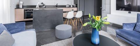 Κομψό καθιστικό ανοικτό στην κουζίνα στοκ εικόνα με δικαίωμα ελεύθερης χρήσης