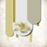 κομψό λουλούδι έννοιας &alph ελεύθερη απεικόνιση δικαιώματος