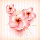 κομψό λουλούδι έννοιας &alph απεικόνιση αποθεμάτων