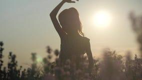 Κομψό μικρό κορίτσι σκιαγραφιών στη φύση απόθεμα βίντεο