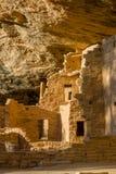 Κομψό σπίτι δέντρων, Mesa Verde NP στοκ εικόνα με δικαίωμα ελεύθερης χρήσης